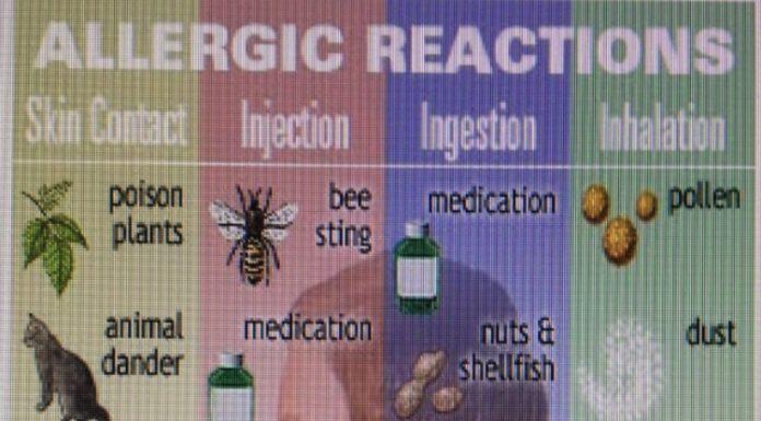 Οι αλλεργ΄΄ιες και πως τις προλαβαίνουμε