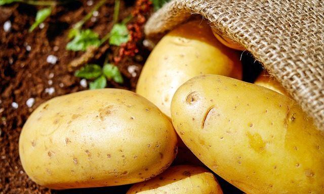 Μπορεί να μας δηλητηριάσει η πατάτα;