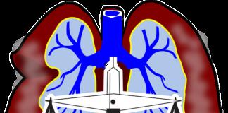 Διατροφικές συστάσεις για νοσήματα του αναπνευστικού