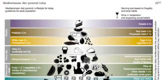Μεσογειακή Διατροφή, δίαιτα DASH, DASH, Μεσογειακή Διατροφή vs δίαιτα DASH